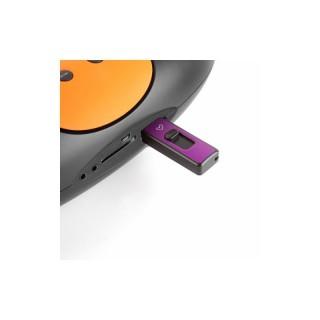 اسپیکر فلش خور Music Box Z220