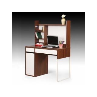 میز تحریر قفسه دار بانه ابیانه