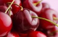 6 ماده غذایی مفید برای خوب شدن و بهبود التهاب