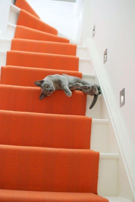 راه پله رنگارنگ نارنجی