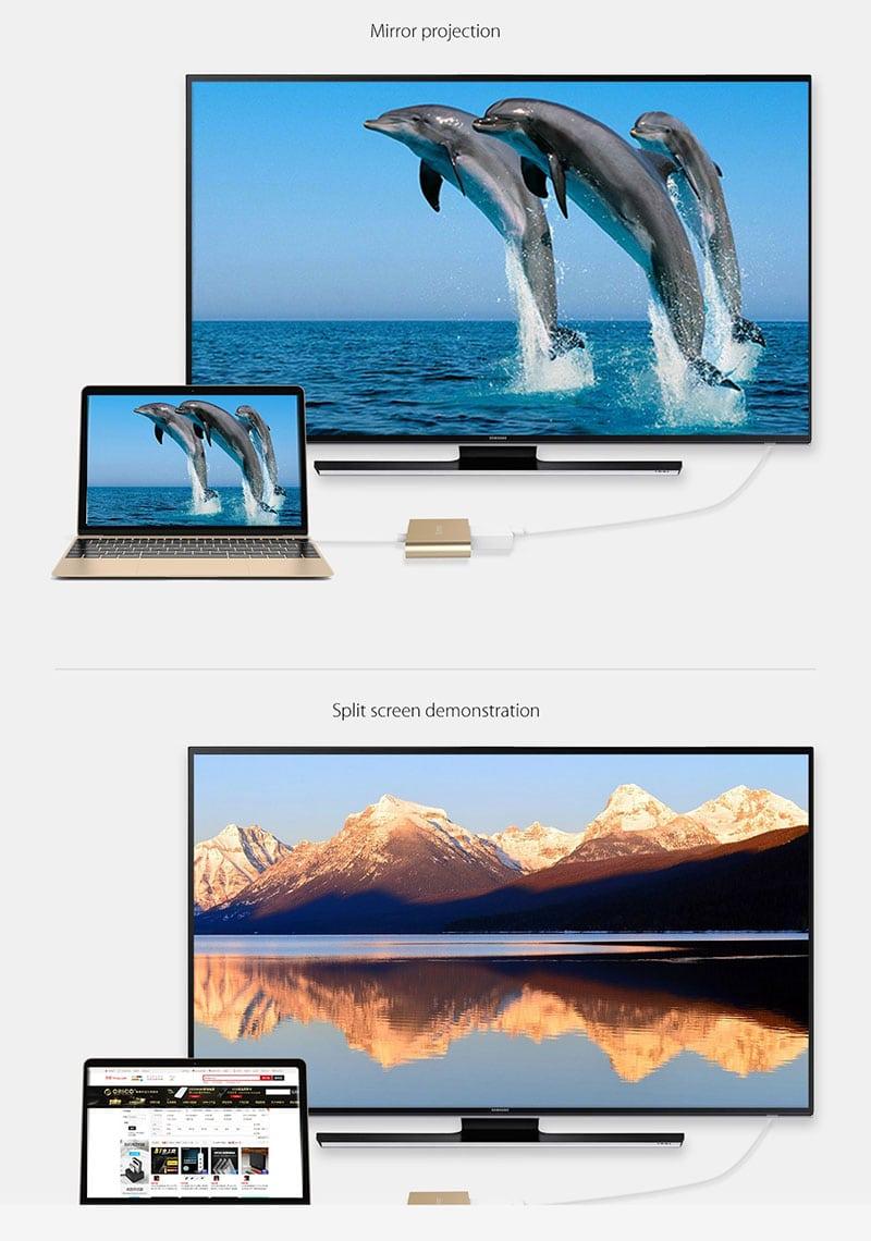 HDMI Type C